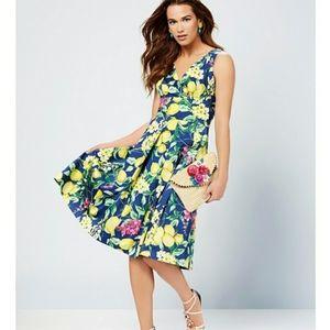 Betsey Johnson Lemon-Print Fit & Flare Dress 12